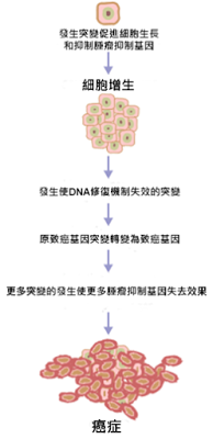 250px-cancer_requires_multiple_mutations_from_nih
